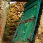 The green door by SylviaCook