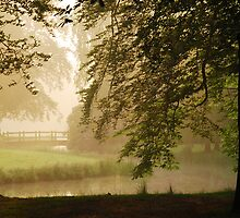 Early morning in Groeneveld Park again by jchanders