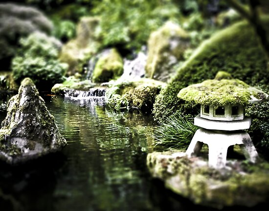 Zen Puddle, Portland, OR. Japanese Garden by HouseofSixCats