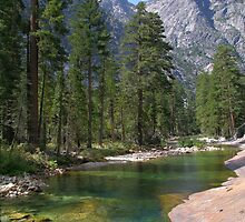The Grand Canyon of the Tuolumne  by Mar Silva