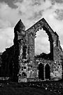Haughmond Abbey part 3 by Matt Sillence