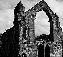 Haughmond Abbey part 3 by Matt Sillence
