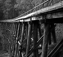 Noojee Trestel Bridge  by Christine  Wilson Photography