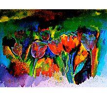 Tulip Symphony Photographic Print