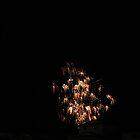 The neighbors  fireworks by gypsykatz
