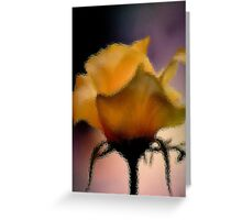 GLASS IMAGE; THE LIME ROSE Greeting Card