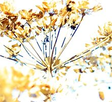 www.lizgarnett.com - Aug 01 by Liz Garnett