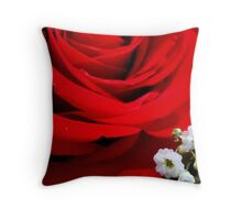 30 plus years of LOVE  ^ Throw Pillow