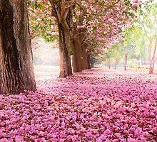 Sakura! The best! SALE! by Vitalia