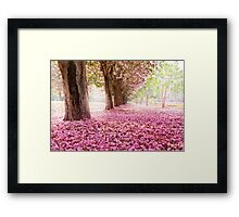 Sakura! The best! SALE! Framed Print
