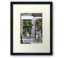 Window Ivy Framed Print
