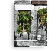 Window Ivy Canvas Print