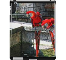 Scarlet Macaws Painted iPad Case/Skin