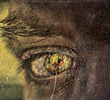 eye contact by eric abrahamowicz