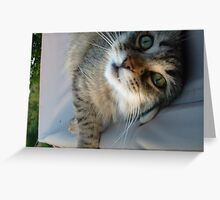 Captured Greeting Card