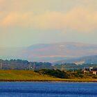Dornoch Firth by nikki harrison