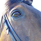 In The Eyes by nikki harrison