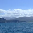 Summer Isles by nikki harrison