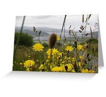 Flora  Burt Co. Donegal Ireland Greeting Card