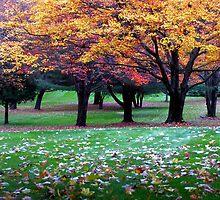 New England Colors by rakiddd