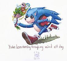 Rag doll Sonic the Hedgehog by Cecile Haynes