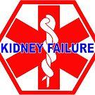 KIDNEY FAILURE MEDICAL ALERT IDENTIFICATION ID TAG  by SofiaYoushi