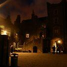 Drimnagh Castle by Ajmdc