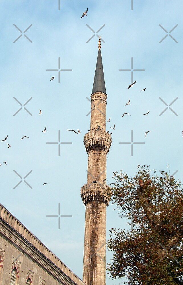 Minaret, Istanbul by Tom Gomez