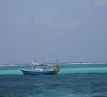 Sailing the Carribean by Cathy Jones