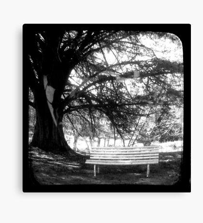 Park Bench - TTV Canvas Print