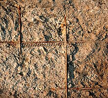 Exposed Rebar by Stephen Thomas
