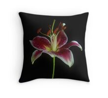 Star Gazer Throw Pillow