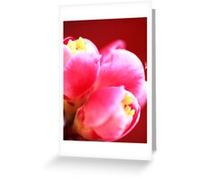 japonica buds Greeting Card