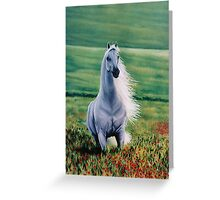 Andalusian Spirit Greeting Card
