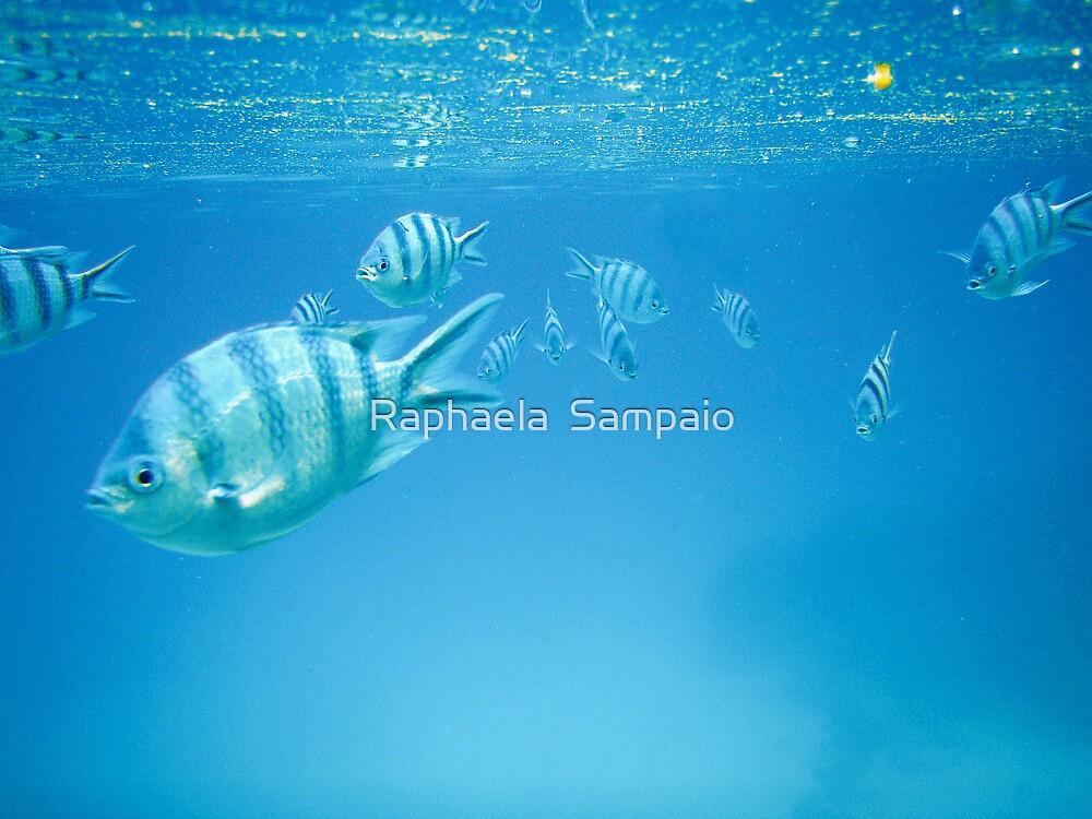 Low Tide Rush by Raphaela  Sampaio