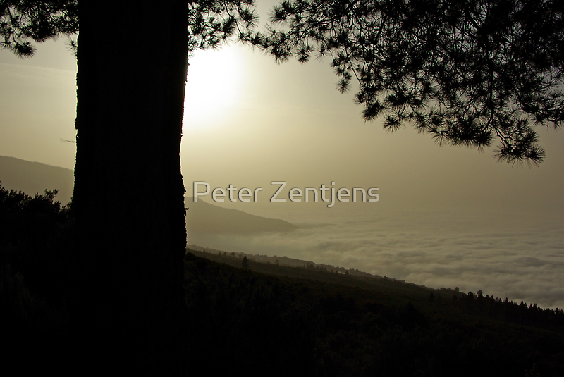 Above the clouds by Peter Zentjens