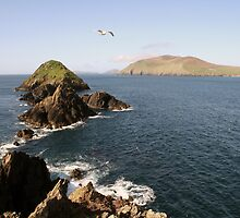 Dingle sea view by John Quinn