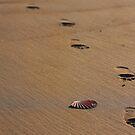 I walk alone by Raphaela  Sampaio