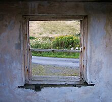 Windows (Defunct Home Edition) by A90Six