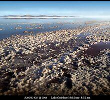 Lake Gairdner-13Jun-8.32am by jiashu xu