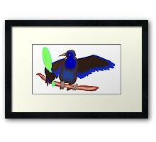Crow With Mirror Framed Print