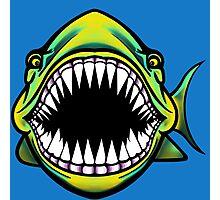 Angry Fish Design  Photographic Print