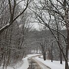 Winter Lane by katsie78