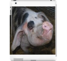 Gloucester Old Spot Pig iPad Case/Skin