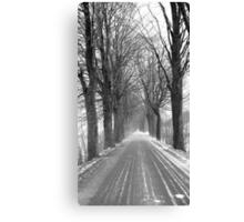 Winter road, Jizera mountains, Czech Republic Canvas Print