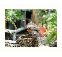 Protecting the Nest Art Print