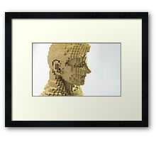 Female figure Framed Print