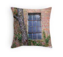 Scarlett's Window Throw Pillow