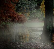 Enchanted by Varinia   - Globalphotos