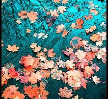 Signs of the autumn by held